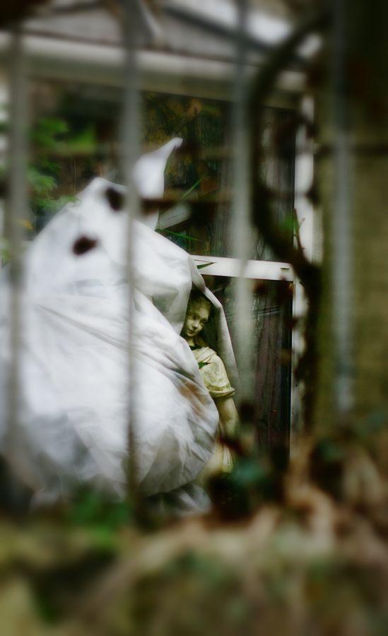 Dans un jardin de Caluire, j'ai vue cette statue à moitié enveloppée dans une bâche. Le muret et la grille extérieur font un cadre naturelle à la photo.