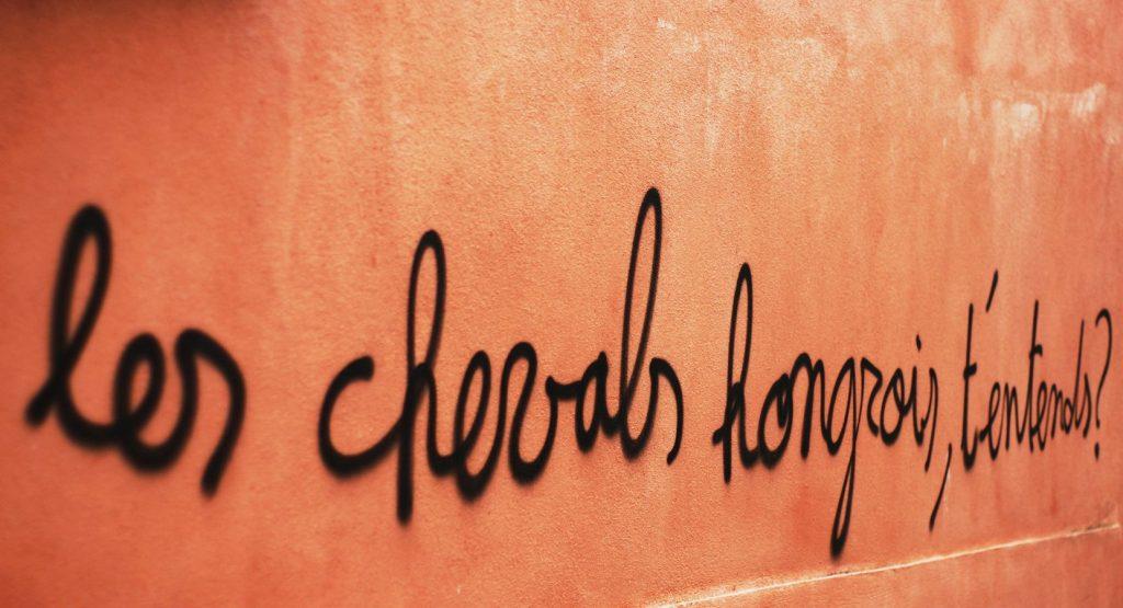 Ce graffiti, découvert en ballade urbaine, rue Bissardon à Caluire-et-Cuire, m'a fait mourir de rire : « Les chevals hongrois t'entends? ».