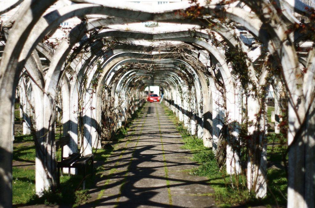 Une allée de la Roseraie de Montessuy à Caluire-et-Cuire, dans le Rhône avec une voiture rouge floue à l'extrémité de l'enfilade d'arcades blanches.