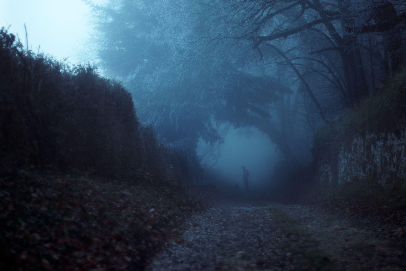 Dans un chemin, plein de brume du Bugey, la petite silhouette de Tsagoï dépasse à peine des fourrées. Pourtant, il a toute l'attention de son Maître, Luc.