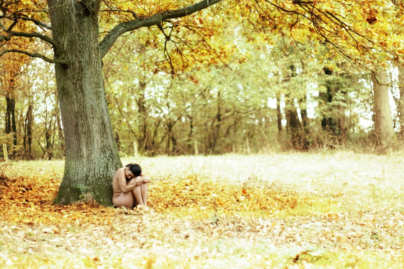 Ana, nue, se repose au pied d'un arbre en automne et la nature vient l'enlacer tendrement et paisiblement. L'arbre est entouré de couleurs flamboyantes.