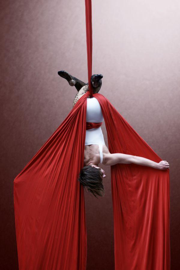 Claire Batissat, à la manière d'une chauve-souris est suspendue la tête en bas à son tissu aérien au gymnase d'Overground Circus.