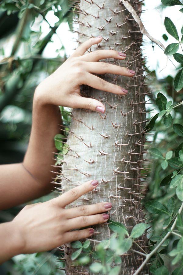 Les doigts d'Ana ont les ongles vernis. Ongles se dit nails en anglais, tout comme les clous auxquels ressemblent les épines des cactus.